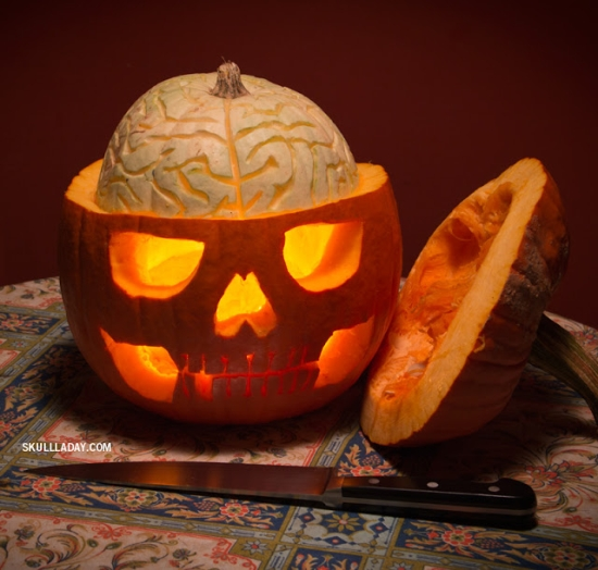 Noah_Scalin_PumpkinAnatomy