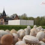 Schieberhäuschen & die Wasserkunst Elbinsel Kaltehofe
